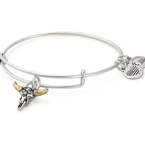 Alex and Ani Bracelet Rafaelian Silver Skull Gold